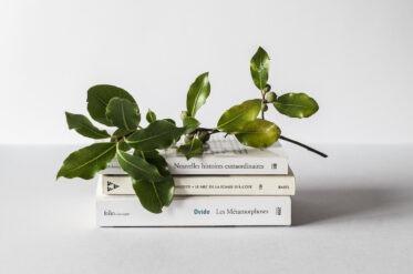 Топ-5 книг для развития креативности