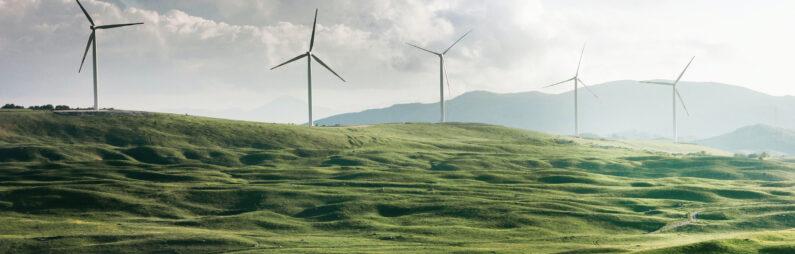 Что такое sustainability и почему это важно